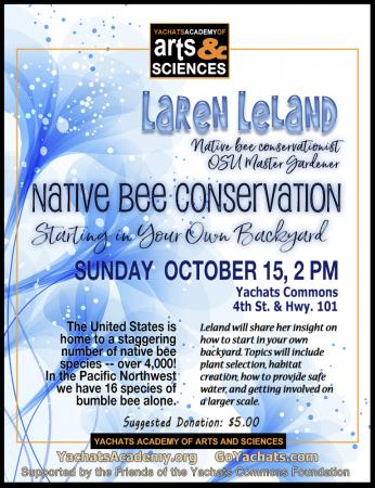 Native Bee Conservation: Starting in Your Own Backyard